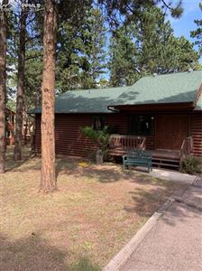 Photo of 769 Log Haven Drive, Woodland Park, CO 80863 (MLS # 6184399)