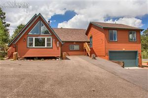 Photo of 1255 Michael Lane, Woodland Park, CO 80863 (MLS # 3972424)