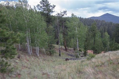 Photo of 255 Idlewild Drive, Cripple Creek, CO 80813 (MLS # 2758440)