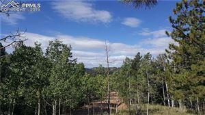 Photo of 1003 Princess Road, Cripple Creek, CO 80813 (MLS # 9998475)