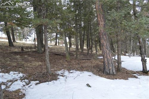 Photo of 924 Will Scarlet Drive, Divide, CO 80814 (MLS # 4572490)