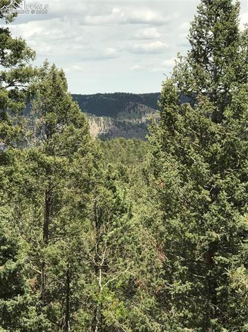 Tiny photo for 450 Potlatch Drive, Woodland Park, CO 80863 (MLS # 9577547)
