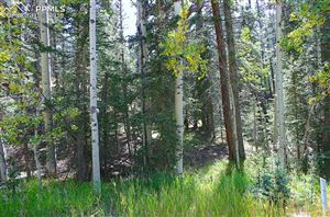 Photo of 384 Spring Valley Lane, Florissant, CO 80816 (MLS # 5921558)