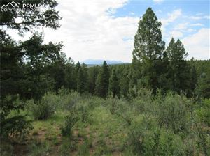 Photo of TBD Being Verified Road, Woodland Park, CO 80863 (MLS # 7394735)
