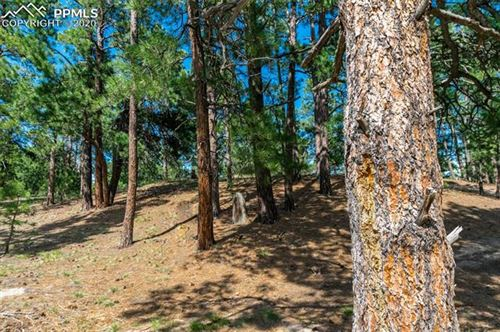 Photo of 18845 Hilltop Pines Path, Monument, CO 80132 (MLS # 2594758)