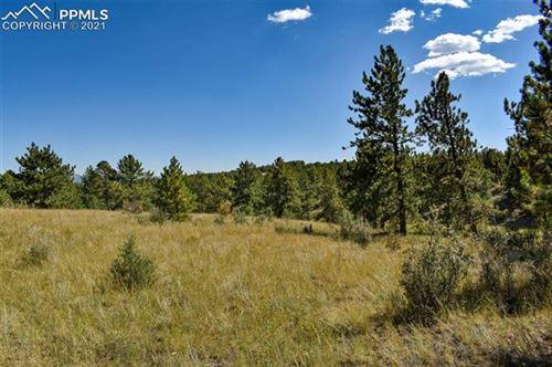 Photo of 674 Pikes Trail, Guffey, CO 80820 (MLS # 2868810)