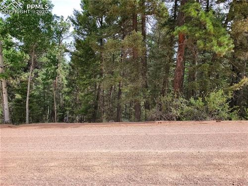 Photo of 2539 N Mountain Estates Road, Florissant, CO 80816 (MLS # 7684841)