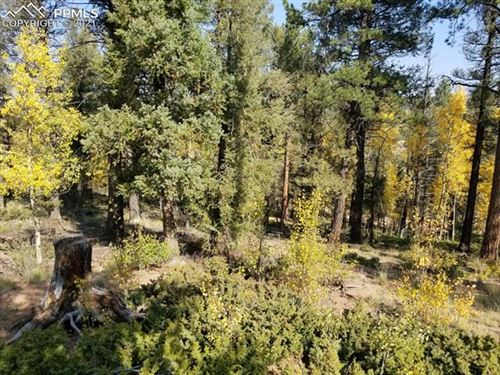 Photo of 912 Derby Drive, Cripple Creek, CO 80813 (MLS # 1115905)