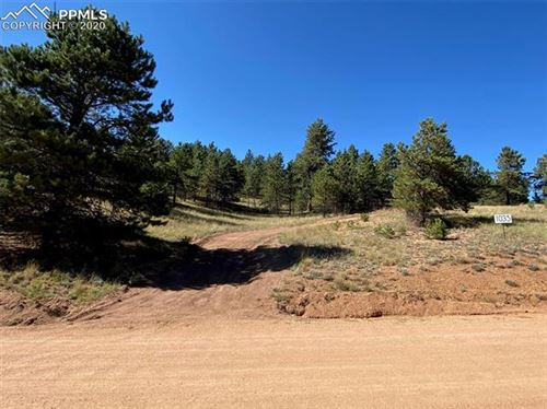 Photo of 1035 W Bison Creek Trail, Florissant, CO 80816 (MLS # 8456934)