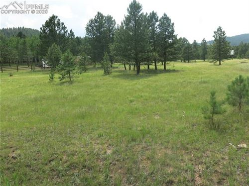 Photo of 1270 Woodland Valley Ranch Drive, Woodland Park, CO 80863 (MLS # 2950950)
