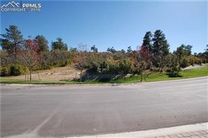 Photo of 1725 Vine Cliff Heights, Colorado Springs, CO 80921 (MLS # 6568955)