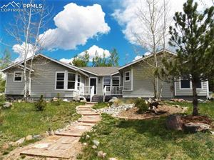 Photo of 300 Comanche Trail, Woodland Park, CO 80863 (MLS # 3539974)