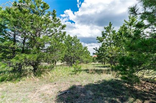 Photo of 1605 Trumpeters Court, Monument, CO 80132 (MLS # 8627980)