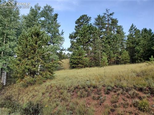 Photo of 637 Spring Valley Lane, Florissant, CO 80816 (MLS # 8724983)