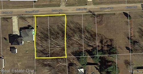 Photo of 00 Birch Tree Road, Worth Township, MI 48450 (MLS # 2200073040)