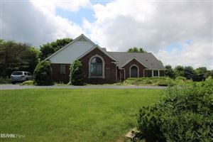 Photo of 3835 KLAIS DR, ORION Township, MI 48348 (MLS # 58031393488)