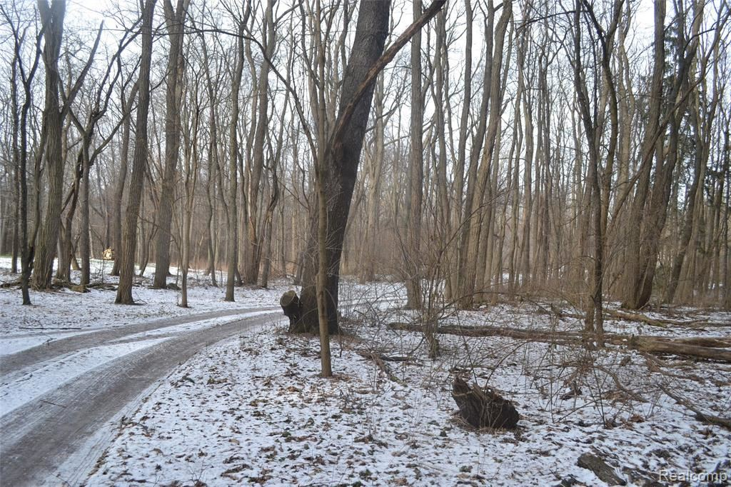 Photo of 745 WOLFE Road, Groveland Township, MI 48462 (MLS # 2200102545)