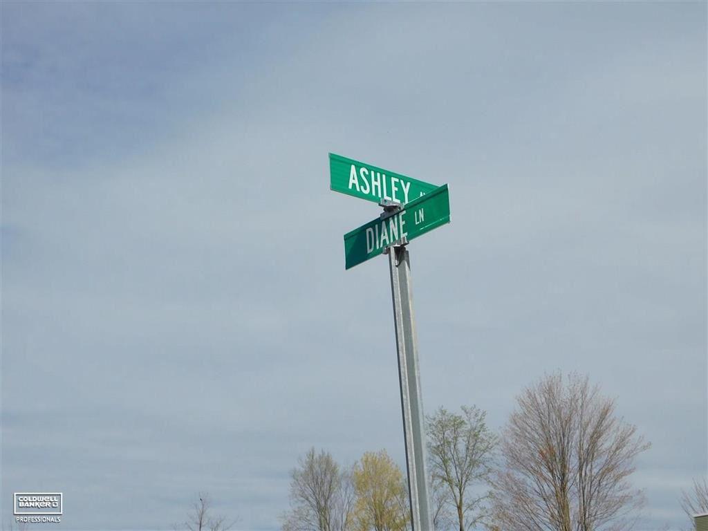 Photo of 67854 ASHLEY AVENUE, RICHMOND, MI 48062 (MLS # 58050034572)