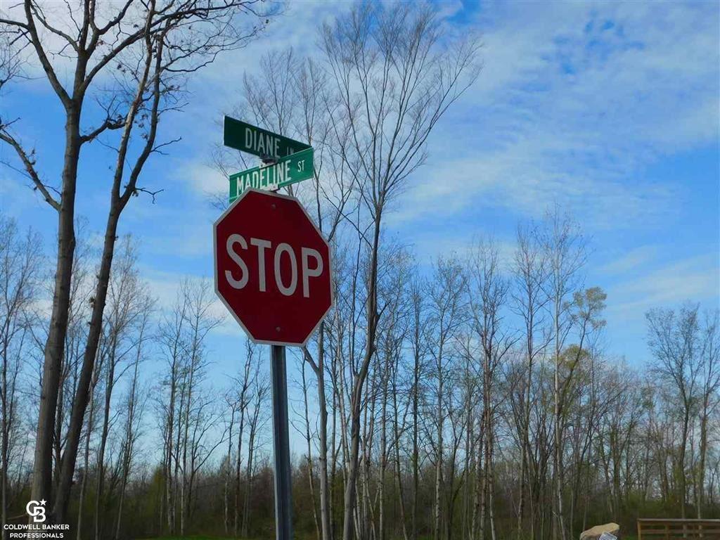 Photo of 67631 MADELINE STREET, RICHMOND, MI 48062 (MLS # 58050034589)