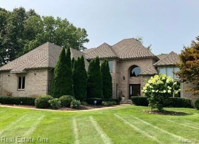Photo for 500 HAWKSMOORE Drive, Orion Township, MI 48348 (MLS # 2210076757)