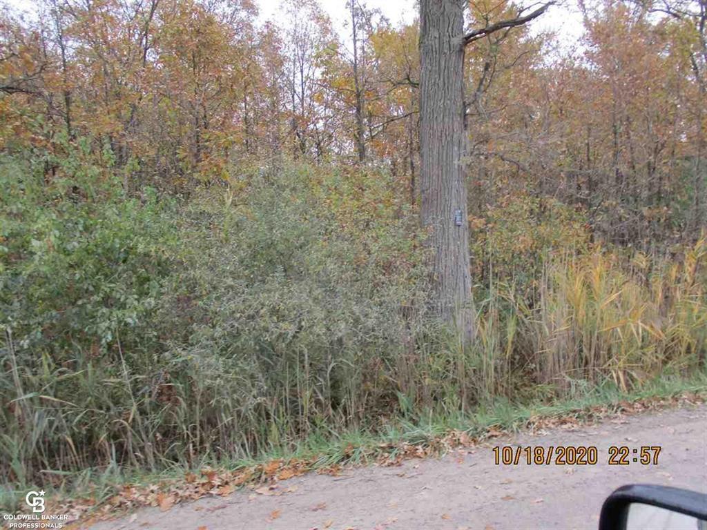Photo of 00 PLACE RD PARCEL G, LENOX, MI 48050 (MLS # 58050026769)