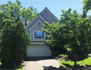 Photo of 7346 Chipmunk Hollow, Independence Township, MI 48346 (MLS # 219083931)