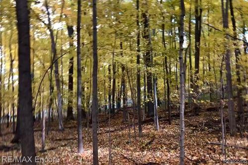 Tiny photo for 10341 Bridge Lake Road, Springfield Township, MI 48348 (MLS # 2200084963)