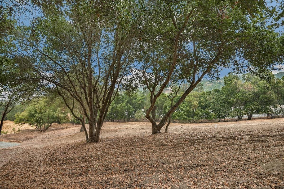 Photo for 27360 Elena RD, LOS ALTOS HILLS, CA 94022 (MLS # ML81815039)
