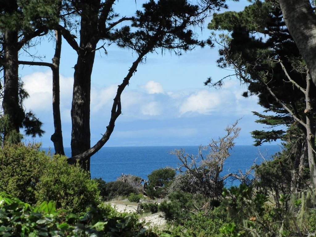 Photo for 2939 Old 17 Mile DR, PEBBLE BEACH, CA 93953 (MLS # ML81746101)