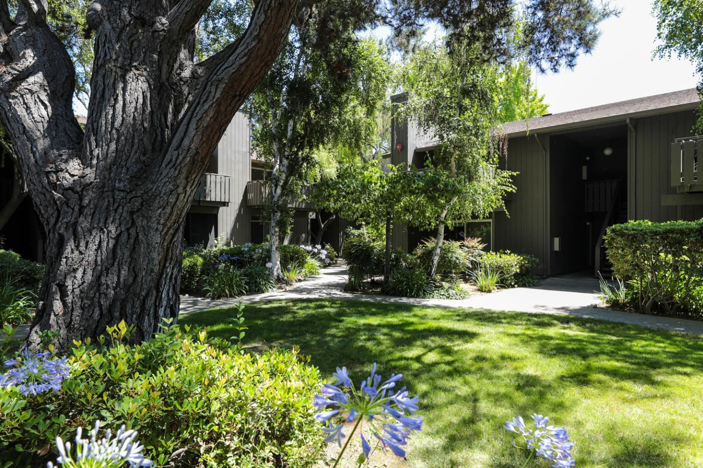 Photo for 50 East Middlefield Road #25, MOUNTAIN VIEW, CA 94043 (MLS # ML81854352)