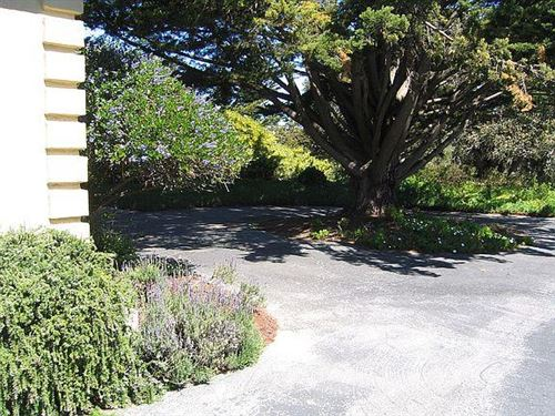 Tiny photo for 11394 Saddle Road, MONTEREY, CA 93940 (MLS # ML81839409)