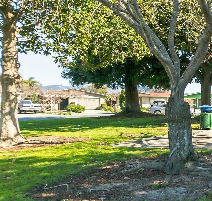 622 Ester WAY, Watsonville, CA 95076 - #: ML81783721