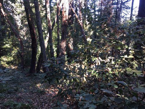 Photo of - Mountain Charlie RD, LOS GATOS, CA 95033 (MLS # ML81819775)