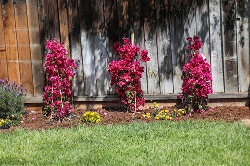 Tiny photo for 1304 Todd Street, MOUNTAIN VIEW, CA 94040 (MLS # ML81840810)