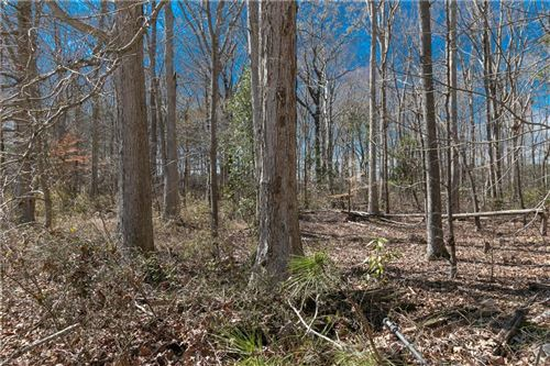 Photo of Lot 5 New Bridge RD, Virginia Beach, VA 23456 (MLS # 10331162)