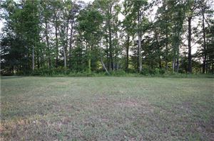 Photo of 2021 Cassidy CT, Suffolk, VA 23434 (MLS # 10262361)