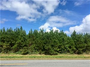 Photo of 22 AC Jackson RD, Suffolk, VA 23432 (MLS # 10216423)