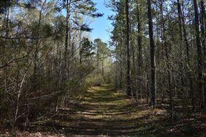 Photo of 74 AC Tucker Swamp RD, IVOR, VA 23866 (MLS # 10189840)