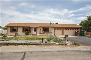 Photo of 105 Leo Drive, Sparks, NV 89441 (MLS # 190006970)