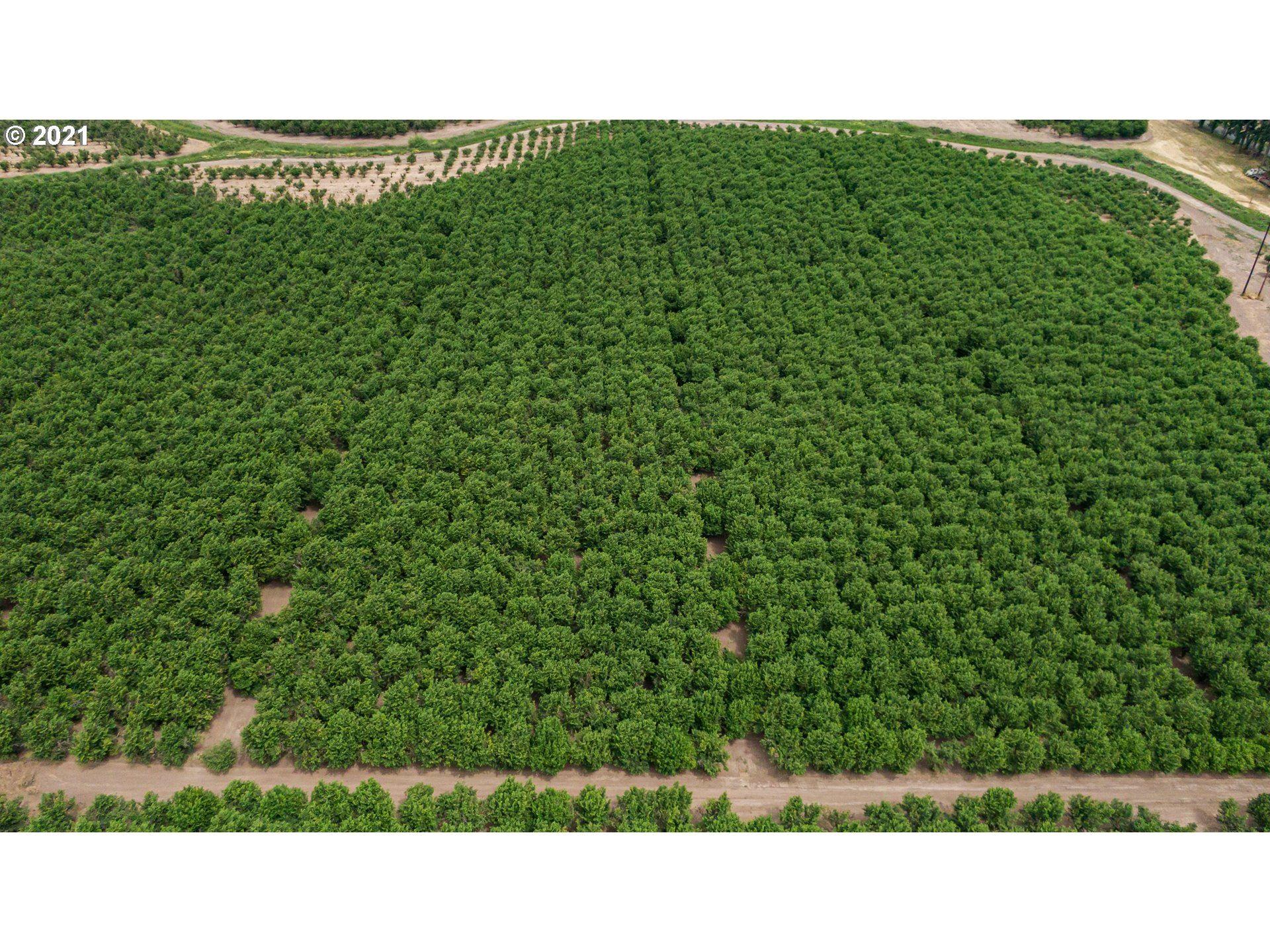 Photo of 7565 FARMER RD RICKREALL, Rickreall, OR 97371 (MLS # 21194009)
