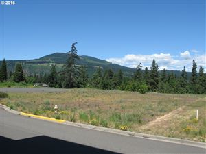 Photo of WASCO LOOP, Hood River, OR 97031 (MLS # 16141021)