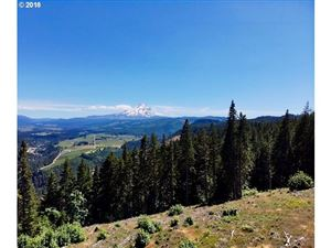 Photo of 3755 PAUL PARTLOW RD, Mt Hood Prkdl, OR 97041 (MLS # 18274044)