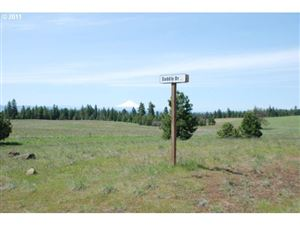 Photo of Saddle DR 18, Goldendale, WA 98620 (MLS # 11208076)