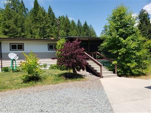 Photo of 222 PINEY HILL LN, Tiller, OR 97484 (MLS # 18129083)