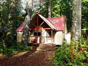 Photo of 188 Cabin North Woods, Cougar, WA 98616 (MLS # 18581107)