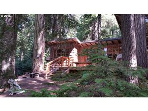 Photo of 22865 HWY 58, Crescent Lake, OR 97733 (MLS # 16674170)