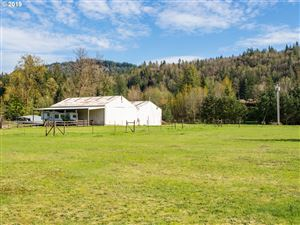 Tiny photo for 19300 SE SUMMERTIME DR, Sandy, OR 97055 (MLS # 19240219)
