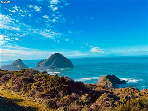 Photo of HWY 101, Gold Beach, OR 97444 (MLS # 15186281)