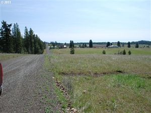 Photo of Thompson RD 8, Goldendale, WA 98620 (MLS # 11062310)