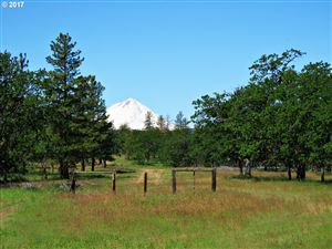 Photo of 81127 RAIL HOLLOW RD, Dufur, OR 97021 (MLS # 17568344)